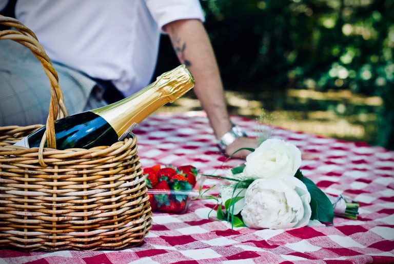 Picnic in the vines at Squerryes